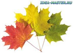 Натуральные растительные красители - как сделать, окраска натуральными красителями