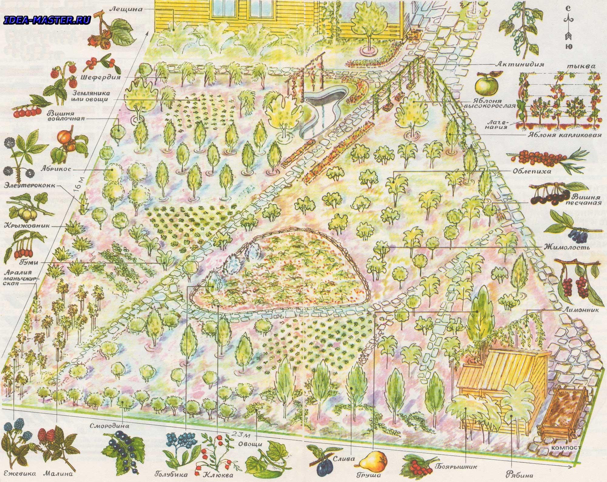 схема планировки сада